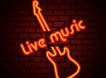 Concert – Soirée privée – Neuvic (24)